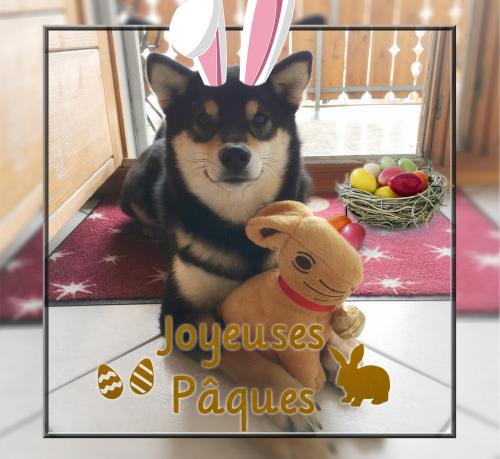 Joyeuses Pâques Shinju