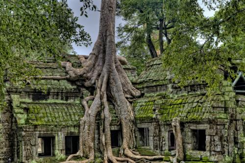 Siem Reap, Angkor