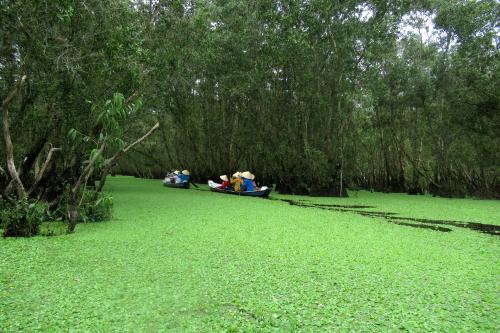 Forêt de Tra Su