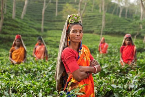 Femmes, Inde