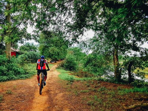 Battambang à vélo
