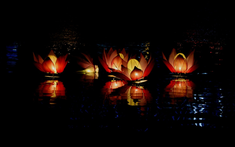 Abstract-abstract-photo-buddhism-festival-596594