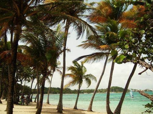 Beach-1191204_1920